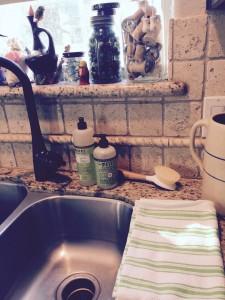ePantry: Free Mrs. Meyer's Seasonal Dish and Hand Soap & Free Shipping